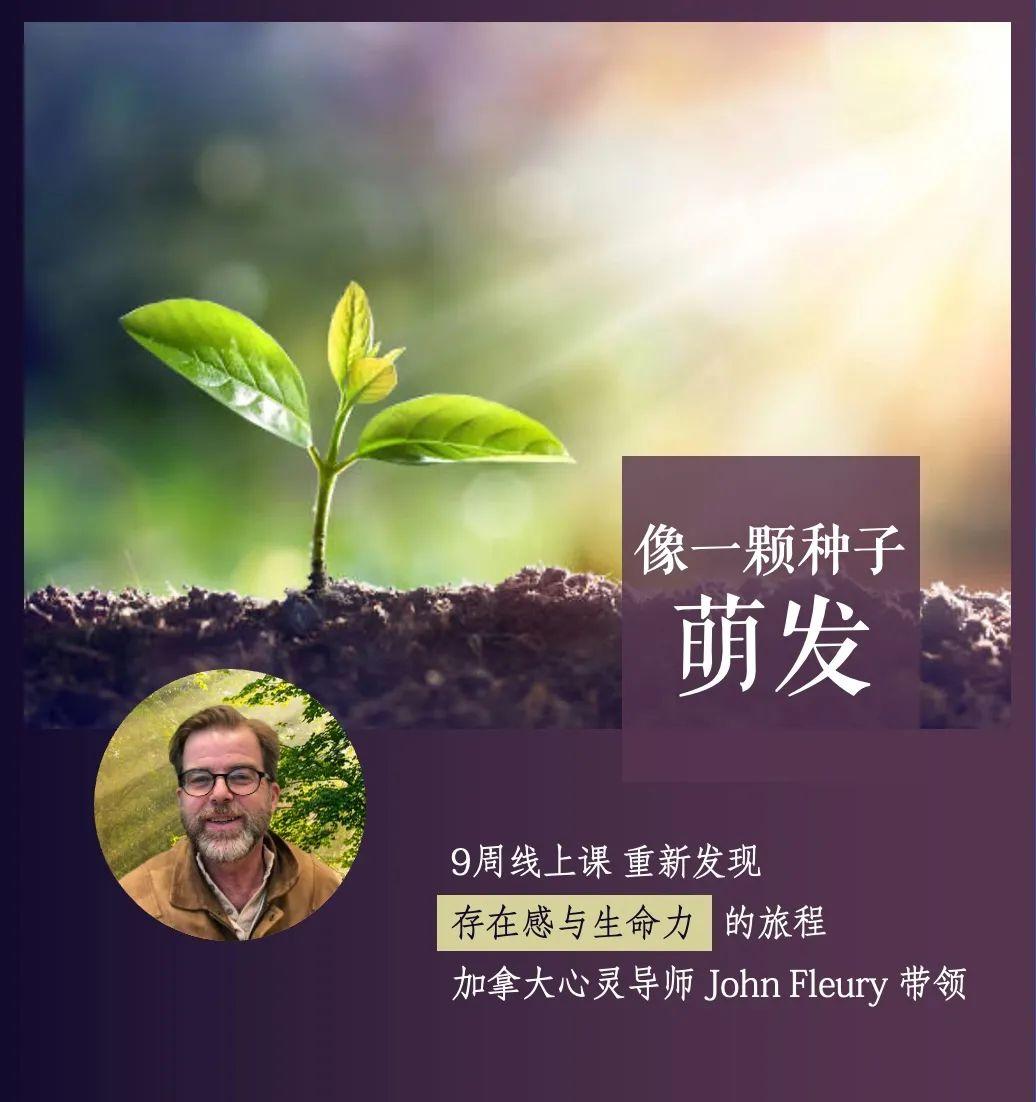 像一颗种子萌发 | 加拿大心灵导师John Fleury 带领你探索存在和生命力